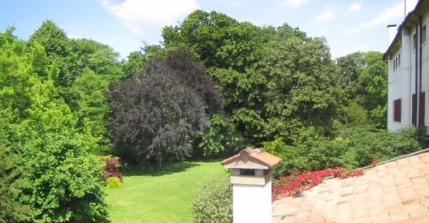 giardino dietro_001_DCMS