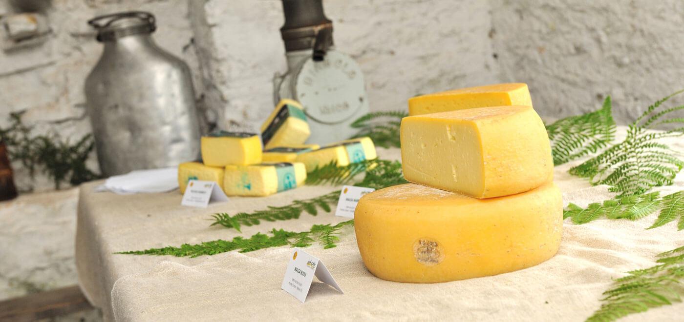 vivereilgrappa-formaggi-03