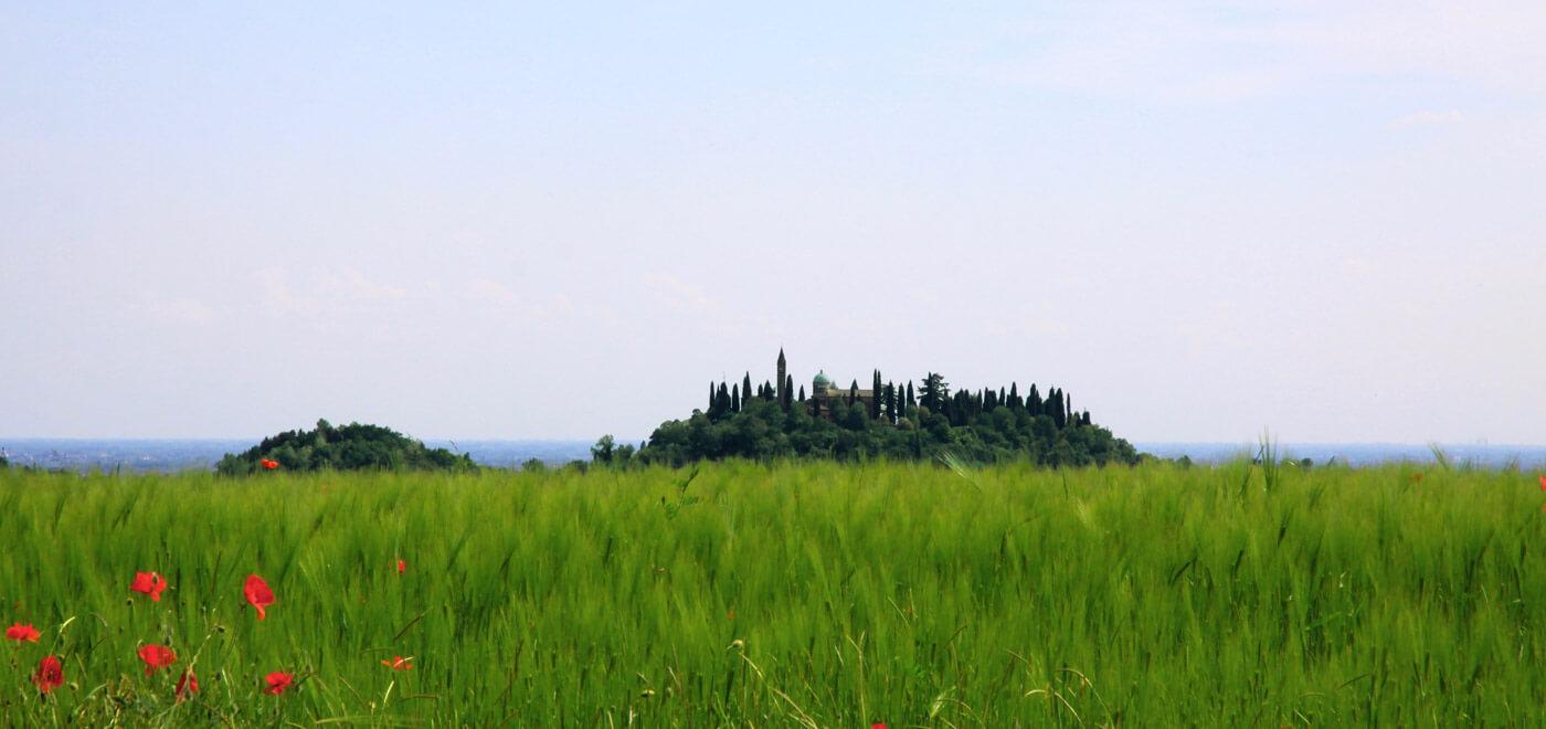 vivereilgrappa-monte-grappa-natura-prato-verde-01